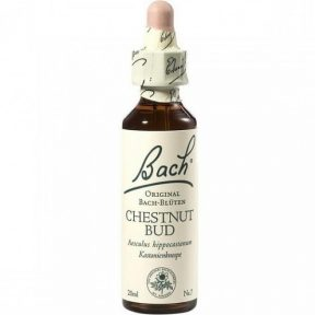 POWER HEALTH BACH CHESTNUT BUD 20ml